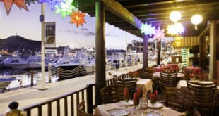 Marina Fiesta Resort & Spa Updates Kids Club at Los Cabos Marina