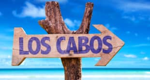 visit los cabos green fest this fall season