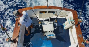 best sport fishing tournament in cabo san lucas