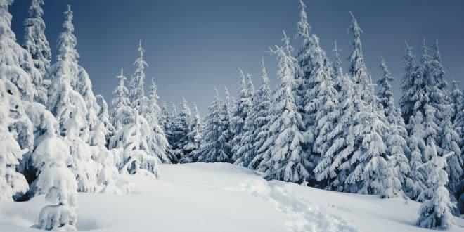 best winter travel tips