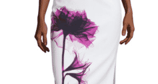JC Penney period skirt