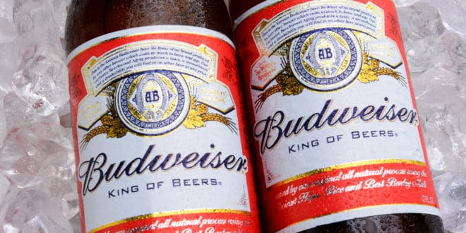 Budweiser Bottles On Ice