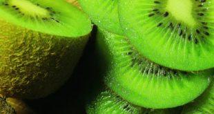 properties of kiwi