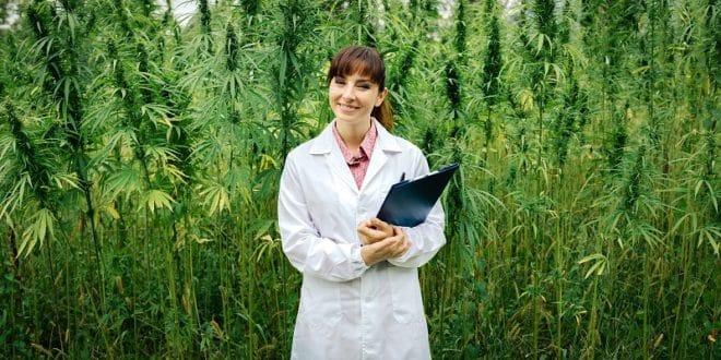 Cannabis Kills Cancer Cells