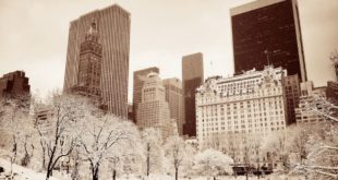Wholesale Inventory Network Highlights the Holiday Season in New York