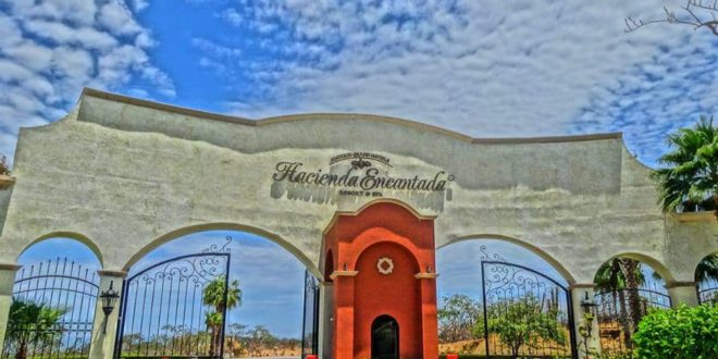 """H"" Recognition Awarded to Hacienda Encantada Resorts and Residences Restaurants"