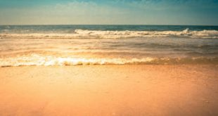 Primetime Vacations Specials Submits Helpful Information Ahead Of Myrtle Beach Trip