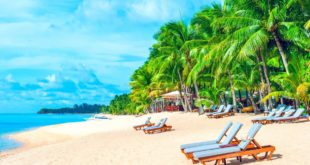First Choice Travel Informs Members About Bermuda Beach Etiquette