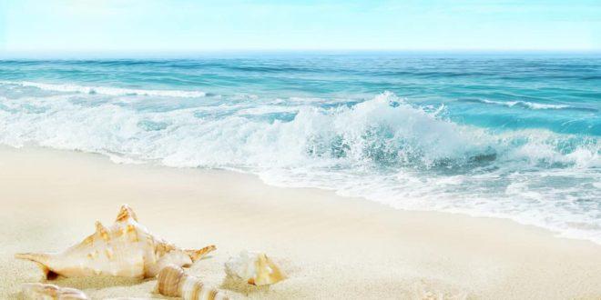 Krystal Cancun Timeshare Explores Cancun