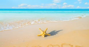 Holidays Lounge Visit Miami This Summer