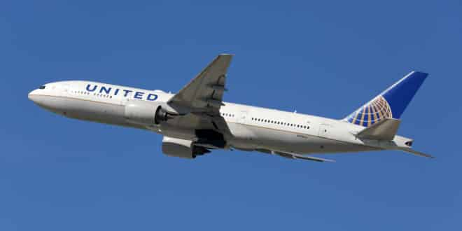 United Airlines Responsible for Death of Dog put into Overhead Compartment