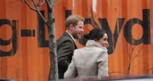 Details of the Royal Wedding Prince Harry and Meghan Markle (2)