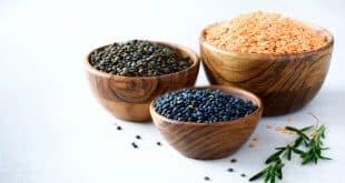 Plant-Based Food Recipes the Whole Family will Enjoy (1)