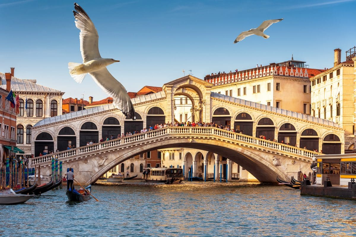 Top Sites in Venice For 2019 (1)