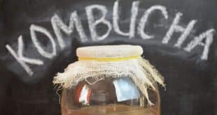 Health Benefits of Kombucha Tea 1