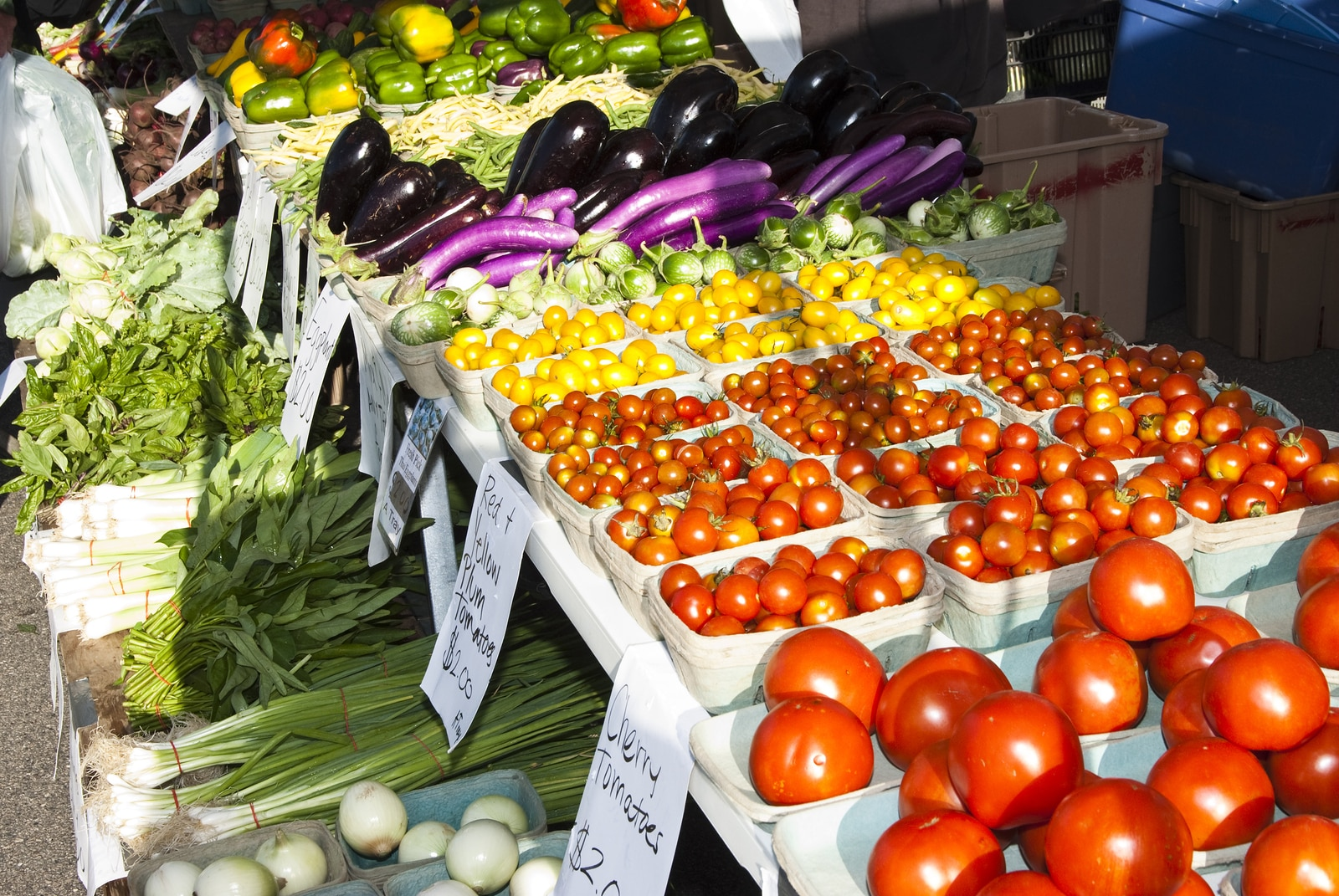 fresh vegetables at a farmers market