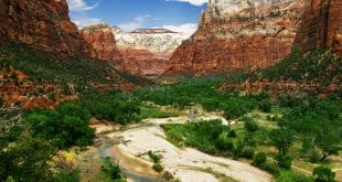 Reliefs of Zion canyon National Park. Utah. USA.