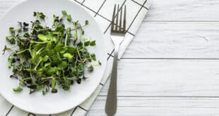 Micro greens in a plate