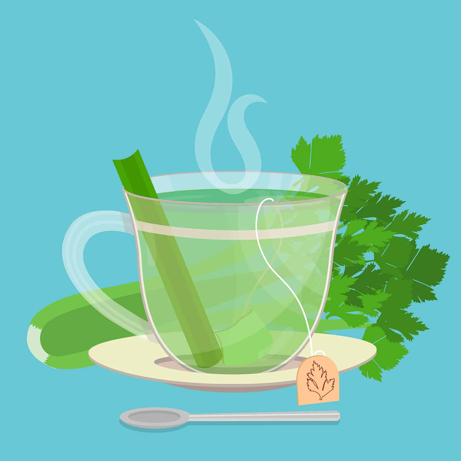 Top benefits of drinking celery tea