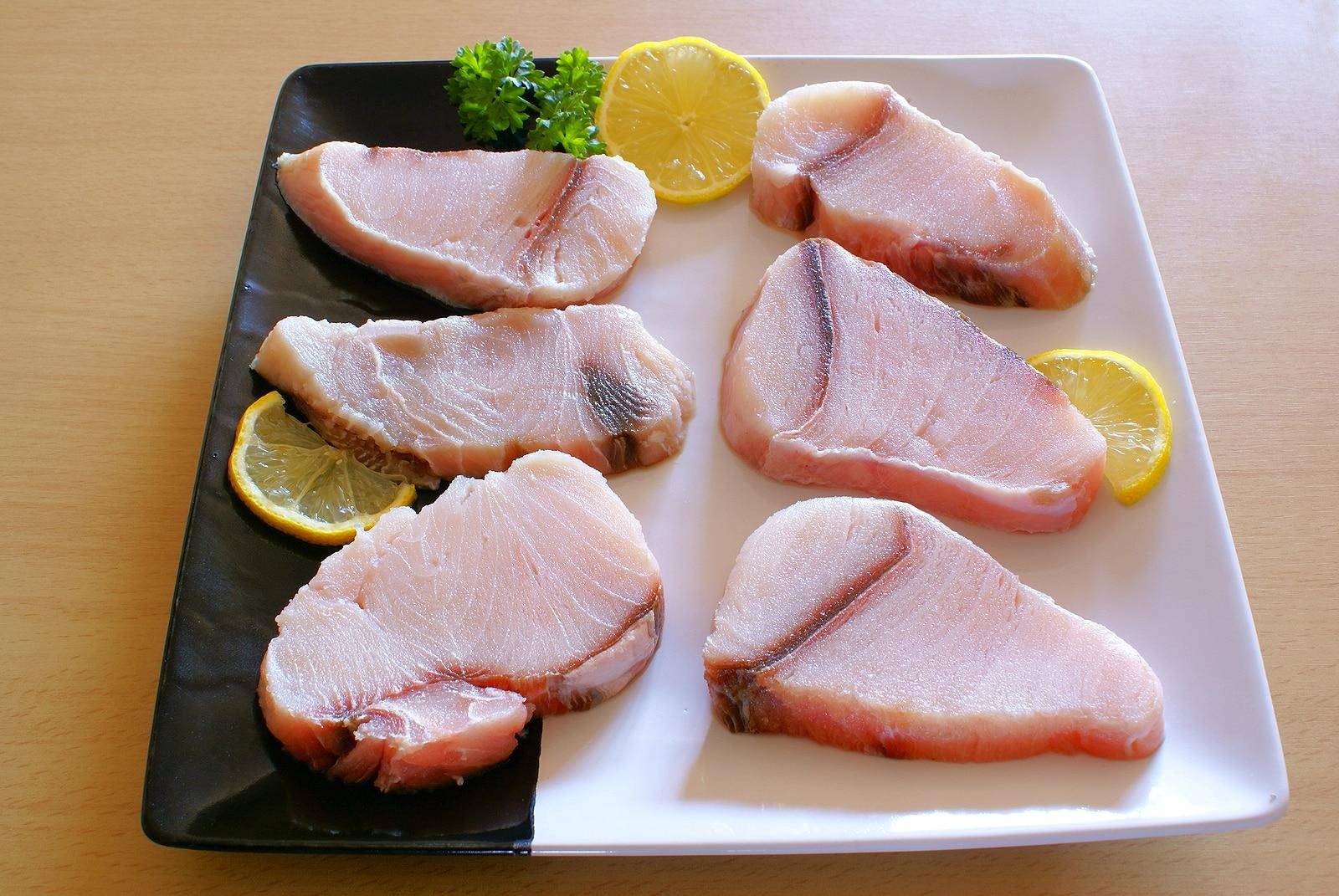 Raw shark fillets. shark meat
