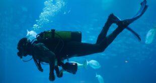 how to prevent seasickness