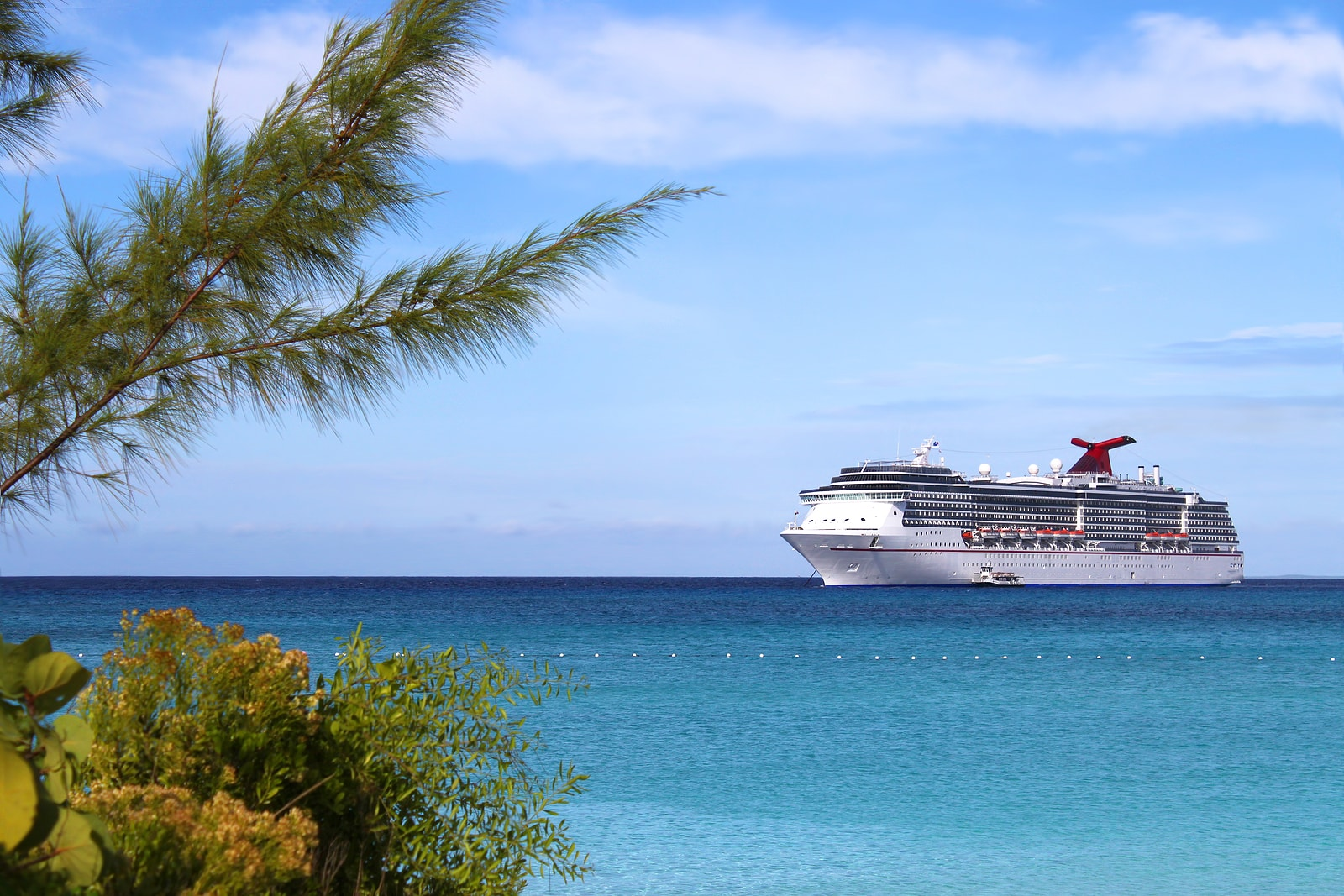 How to Not Get Seasick While Taking a Cruise or Diving