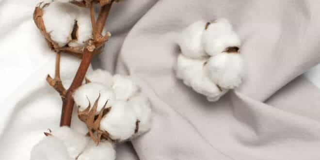 Best Fabrics for Maintaining Healthy Skin