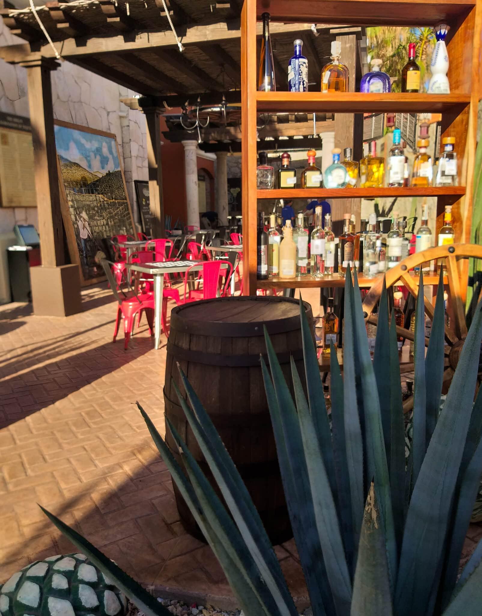 Tequila Expert Pamela Miranda